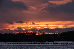 Sunset after the snow storm (iwona.kilichowska) Tags: scenery countryside nature fields sunset storm sunlight sky sun landscape clouds trees forest snow winter frost farm village golden weather dusk twilight orange evening tree walk wow rural poland