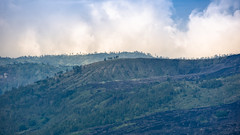 Mount Batur Highlands (Arushad) Tags: arushad bali clouds indonesia travel arushadahmed batur dash8x expanse highlands hills lands lavafields sky trees