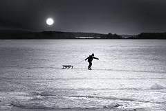 Heavy Load in Tow (fehlfarben_bine) Tags: nikond800 nikon7002000mmf4 landscape ice frozenlake berlin boy pulling monochrome silhouette sled winter mood