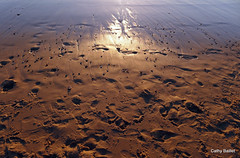 Attendre l'été (Cathy Baillet) Tags: aquitaine atlantique biscarrosse cathybaillet dune eau france landes lumière landscape leslandes light mer nature océan plage photo terre sable water pas trace sunrise coucherdesoleil