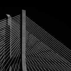 Lisboa (No Great Hurry) Tags: blackwhitesquare thenakedabstract constructuralart blackandwhite abstract geometric mono noiretblanc vascodagama lisbon lisboa nogreathurry robinmauricebarr square lines blacksky portugal armandorito diagonal bridge minimalism minimal monochrome 18200 pattern blackbackground light linesandcurves curves géométrie bsquarecompetition robin ngh perspective building structure creative onblack