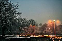 * (PattyK.) Tags: 2017 january ioannina greece nikond3100 amateurphotographer ιωάννινα ιανουάριοσ ελλάδα giannena giannina epirus ipiros mycity whereilive winter afternoon snow cold lights afternoonlights europe europeanunion winterafternoon weather citycenter trees ήπειροσ βαλκάνια ευρωπαικήένωση snowingreece χιόνι χειμώνασ λιθαρίτσια γιάννενα απόγευμα φώτα