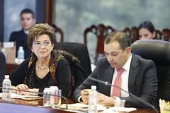 2017-01-30 y 31 Reunión Plenaria y C.P. GPPAN (24)