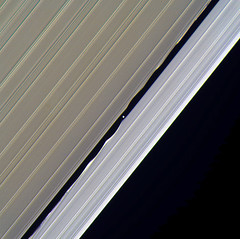 Daphnis - February 6 2017 (Kevin M. Gill) Tags: saturn daphnis rings ringsofsaturn keelergap cassini nasa jpl space planetary science astronomy
