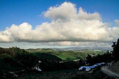 للخيمة باب وحيد, باتجاه السماء . (ziad.homsi) Tags: sky cloud landscape outdoor syria سوريا lattakia اللاذقية