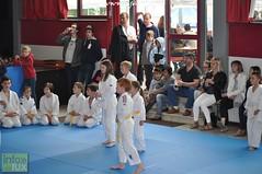 Judo-habay021