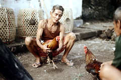 27-261 (ndpa / s. lundeen, archivist) Tags: people bali man color men bird film birds 35mm indonesia basket sandals nick cage cock squat arena dirt southpacific handlers baskets rooster cocks 1970s 27 1972 handler roosters indonesian crouch crouching cockfight gamecock squatting gamecocks cages dewolf oceania pacificislands cockfighting nickdewolf photographbynickdewolf cockfightingarena reel27 cockfightarena