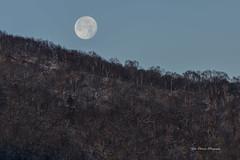 赤城山と満月 (yoko.wannwannmaru) Tags: 20141208dsc5091n earlymorning fullmoon winter japan nature 地蔵岳 145 explore
