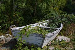 An old boat (londa.farrell) Tags: 2016 august canada canon canondslr canoneos7dmarkii historicacadianvillage levillagehistoriqueacadien lowerwestpubnico novascotia pubnico southshore summer middlewestpubnico