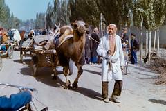 Karakoram Hwy, Sept 1986.  Market traffic (johnjackson808) Tags: china fujifilmxt1 karakoramhighway karakorammountains kashgar tajik xinjianguyghurautonomousregion camel desert film market mountains plateau streetphotography traffic