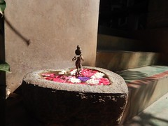 The Legend Kuchipudi Dancer Dr. Vyjayanthi Kashi's Shambhavi School of Dance Outside Photography By Chinmaya M.Rao  (3)