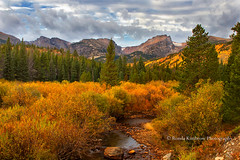 Fall in Rocky Mountain National Park (RondaKimbrow) Tags: rockymountainnationalpark rmnp mountains rugged fall autumn landscape river trees pine evergreen orange green clouds scenic destination travel vacation nationalpark brush nature hiking