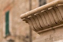 (the best maio) Tags: capitello sfocato bokeh colonna colum