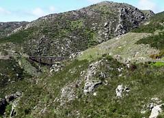 Dunedin. Taierie Gorge train trip. Rail bridge and rail tunnel along the line in a rugged mountain gorge. (denisbin) Tags: dunedin taieriegorge railway railbridge railtunnel otago