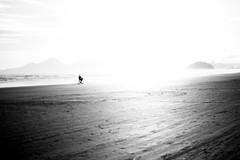 for 2017: 'light, more light' [goethe's last words] (RegiCardoso) Tags: pretoebranco monocromático aoarlivre costa paisagem litoral oceano água water ocean reginaldocardoso pb bw blackandwhite monocromie beach landscape