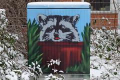 Waschbär im Winter (Sockenhummel) Tags: volksparkwilmersdorf stromkasten streetart bild gemälde waschbär kunst graffity graphity berlin volkspark fuji x30 fujifilm finepix fujix30