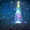 Arbol de Navidad (Luis Carlos Florez) Tags: feliznavidad luiscarlosflorez luiscarlos frohe weihnachten god jul 聖誕快樂 メリークリスマス buon natale joyeux noël vrolijk kerstfeest giáng sinh vui vẻ veselé vánoce feliznatal 성탄을 축하드려요 wesołychświąt срождеством hyvääjoulua