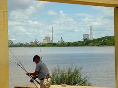 Celulose Riograndense (Gijlmar) Tags: brasil brazil brasilien brésil brasile brazilië riograndedosul américadosul américadelsur southamerica amériquedusud guaíba pescador fisherman rio river