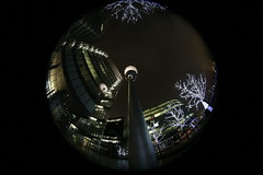 IMG_8649 (Crab2222) Tags: fisheye night evening london towerbridge trees lights blue black white wide wideangle 815mm up lookingup christmaslights christmas fromtheground