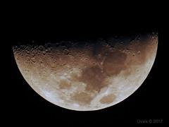 The Moon - A few minutes ago in Riyadh (uvaisjm - Al Seylani Photography) Tags: halfmoon moon nightshot nocturnal nikon zoom