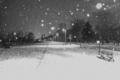 Snow falling at Balmy Beach Park (A Great Capture) Tags: bw lights walk boardwalk walking dark darkness light bench benches agreatcapture agc wwwagreatcapturecom adjm ash2276 ashleylduffus ald mobilejay jamesmitchell toronto on ontario canada canadian photographer northamerica torontoexplore 2016 city downtown urban night nighttime cold snow weather eos digital dslr urbannature streetphotography streetscape street beach beaches