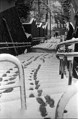 Footprints (shimanosu) Tags: leica ⅲf eimar 5cm tmax100 film bw monochrome street snap morning snow nagoya japan