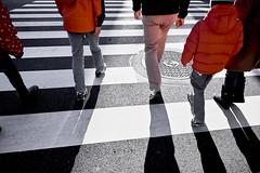 dp0q_170120_A (clavius_tma-1) Tags: dp0 quattro sigma 築地 tsukiji 東京 tokyo 交差点 asphalt zebrazone red