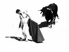 Andy Younes (aficion2012) Tags: arles novillada blohorn jalabert feria du riz france francia corrida bull fight toros toreaux toro bravo 2016 andy younes bw nb monochrome monotone torero novillero matador toreador