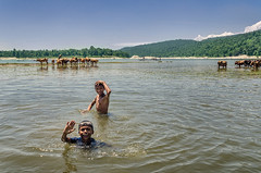 Hello Friends... (_MaK_) Tags: kid people lifescape landscape mountain river swimming wave water cow fun sylhet bangladesh