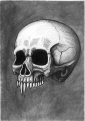 nosferatu skull pencil drawing (ashley russell 676) Tags: nosferatu skull dead vampire vampyre strigoi mori symphony horror black white classic cinema dracula orlok count ghoul spirit transylvania bats monster creature pencil drawing illustration anatomy traditional art
