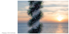 Happy Christmas (hehaden) Tags: pole tinsel pier brightonpier palacepier sea sunset brighton sussex christmas sel55f18z