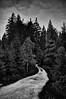 Another curvy path (Petr Horak) Tags: 2016 bw blackwhite blackandwhitephotos fujifilmx100 landscape monochromatic monochrome path plant road tree x100 blackandwhite spruce hrabětice libereckýkraj czechrepublic cze