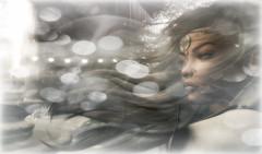 Winter Spirit  (kharis.adrasteia) Tags: wind winter spirit shashi snow framed