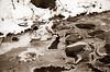 Eisgebilde (naturlicht) Tags: winter canon ae1 fd 70210 apx 100 ultrafine tplus canoscan 8800f vuescan eis wuhle monochrome