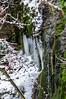 IMG_8418 (Patrick Duric) Tags: winter snow wine grapes badenwutwnberg