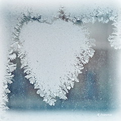 Icy Heart (R_Ivanova) Tags: nature macro ice winter heart white window frost rime sony rivanova риванова лед скреж зима макро