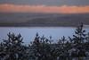 6729 (igor.meiden) Tags: latvia rigaregion sunrisetimeneartheshoreofthebalticsea towhichtheriverflowsinchupe20frostrarewintereffectboilsea латвия рижскийрайон времярассветауберегабалтийскогоморя вкотороевпадаетрекаинчупемороз20редкийзимнийэффектзакипающеемореwinter snow ice sky water sea pine river inchupe dawnзима снег лед небо вода море сосны река инчупе рассветriga mezapark treesinsnow sunsetsoon рига межапарк деревьявснегу скорозакат