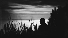 Think about the good old days... (sf_streetphoto) Tags: instagram iphone iphonephotography iphoneography iphone6s streetphotography man silhouette silhouettes dusk water sea ocean river lake shore grass bw blackwhite bnw monochrome