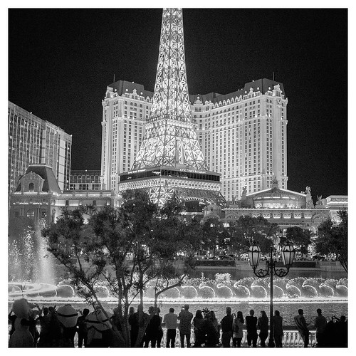 "Paris Las Vegas • <a style=""font-size:0.8em;"" href=""http://www.flickr.com/photos/150185675@N05/31664151435/"" target=""_blank"">View on Flickr</a>"