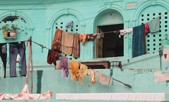 Domestic Blue (peterkelly) Tags: digital india asia canon 6d varanasi laundry clothes clothesline blue wall arch pants pottedplants ghats ghat drying