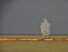 Exposure (Herman Verheij) Tags: exposure gormley antonygormley lelystad