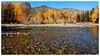 新疆可可托海    Keketuohai river, Xinjiang (Alice 2018) Tags: 2013 xinjiang sonyepz1650mmf3556oss sony sonynex5r yellow autumn nature china plant tree autofocus favorites50 aatvl01 1000views 1000v40f favorites100 aatvl02 2000views 3000views 3000v120f aatvl03 400views aatvl04 aatvl05 favorites150 aatvl06
