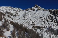 Ovronnaz (bulbocode909) Tags: valais suisse ovronnaz montagnes nature neige arbres mélèzes paysages bleu hiver grandmuveran