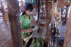 30098745 (wolfgangkaehler) Tags: asia asian southeastasia myanmar burma burmese inlelake villagelife lake innpawkhonevillage woman workshop people worker working weaver weaving weavingloom weavinglooms weavingcloth loom looms