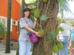 A lovely pair of Jackfruits (wallygrom) Tags: asia srilanka ceylon colombotopinnawala jackfruit jakfruit jak artocarpusheterophyllus