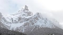 Sass Maor (m. 2812) - Pala group (ab.130722jvkz) Tags: italy trentino alps easternalps dolomites palagroup mountains snowfall winter