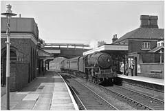 54283 at Newport (Salop) pjs,0649 (geoff7918) Tags: newport shropshire 12061963 45283 stanier black5 wellington stafford2boxley
