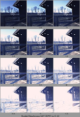 Ektachrome 64T in C-41 Xpro Reference (nicolai_g) Tags: color film contactsheet tungsten reference
