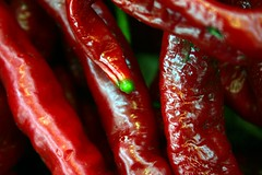 capsicum (Farl) Tags: nyc travel red food usa ny newyork hot green colors pepper us chili spice vegetable fresh queens tip produce spicy capsicum flushing capsaicin hongkongsupermarket