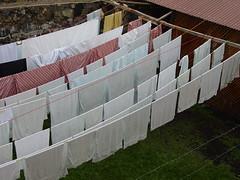 Hotel Washing Line